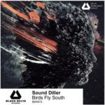 Sound Diller - Birds Fly South