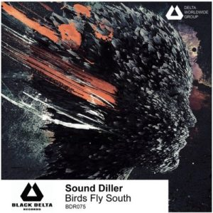 Sound Diller — Birds Fly South