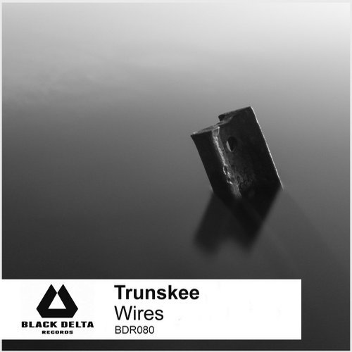 Trunskee — Wires